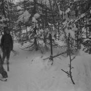 Dyatlov pass 1959 search 28