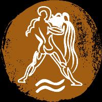 icon-rashi-aquarius-kumbha