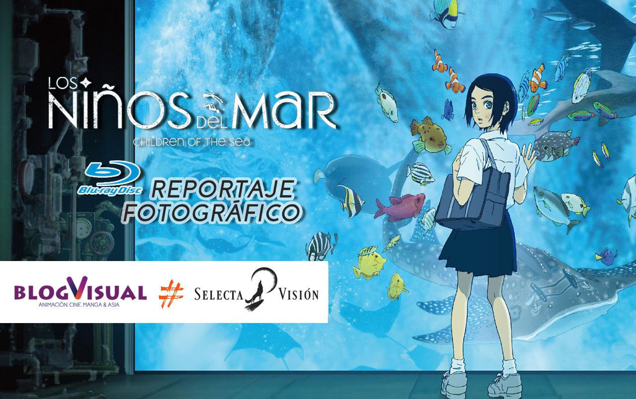 ninos-mar-repor-blu-banner.jpg