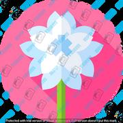 016-flowers