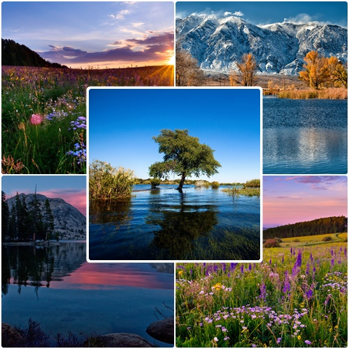 Most Wanted Nature Widescreen Wallpapers # 601