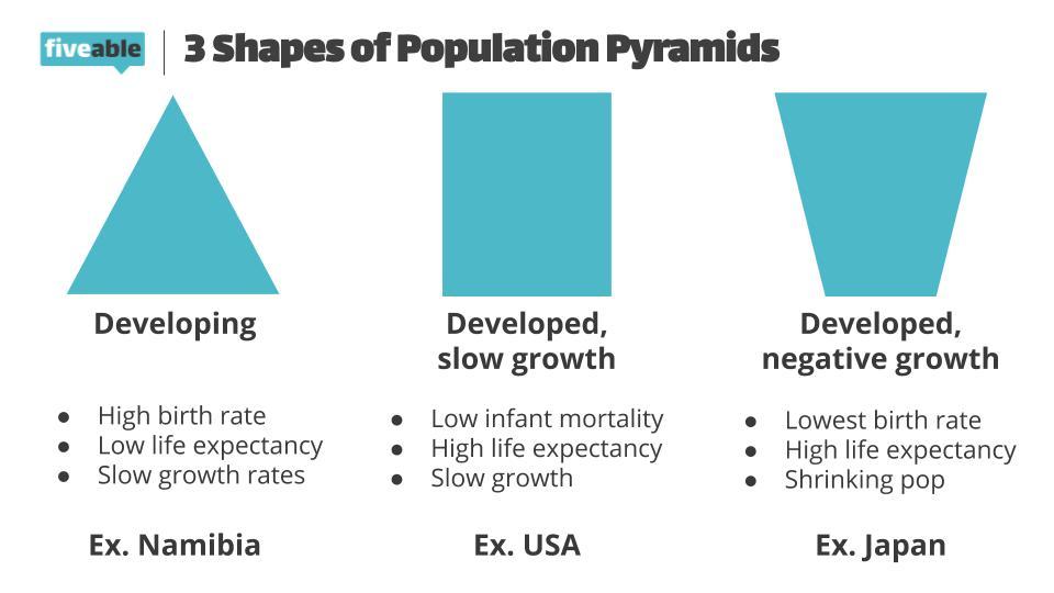 https://i.ibb.co/6gtnssk/AP-Human-Geo-Population-Pyramids.jpg
