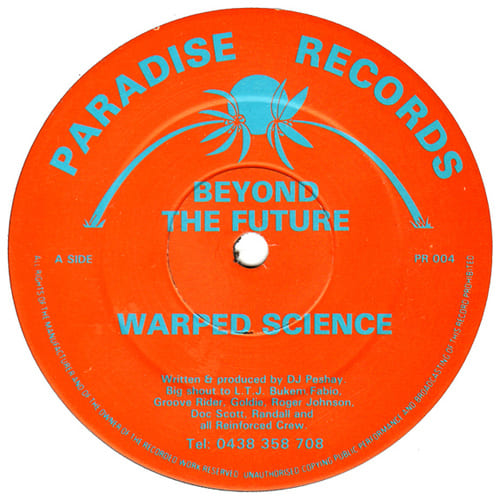 Download Beyond The Future - Warped Science / Disillusioned mp3