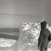 Dyatlov pass 1959 search 75