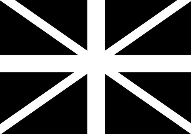 flag-planv1.png