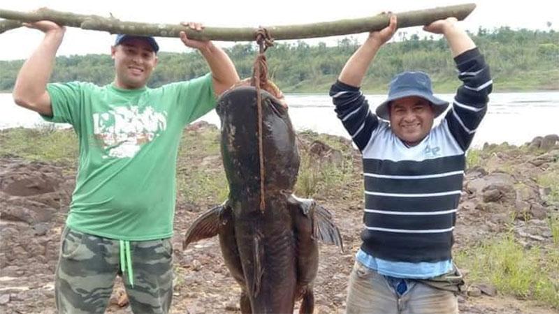 Padre e hijo pescaron un enorme manguruyú de 80 kilos en el río Paraná