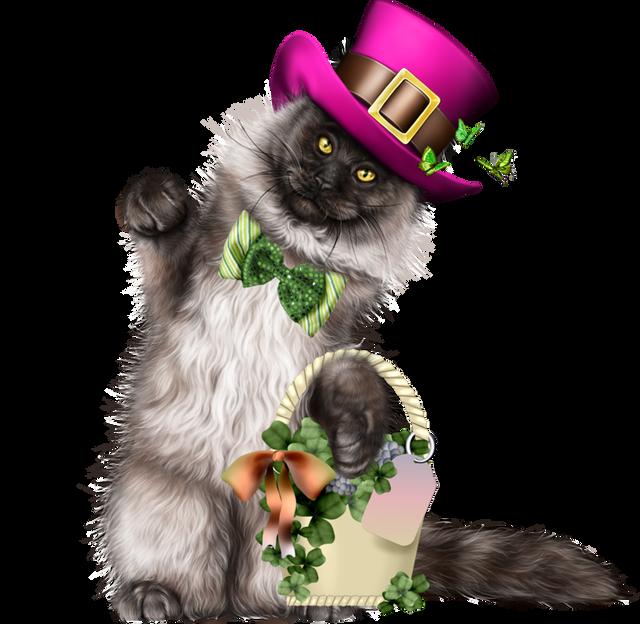 Leprechaun-Cat-With-Beer-50.png