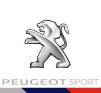 La Peugeot 308 TCR Conclut La Saison De TCR Par Un Double Podium ! Peugeot-sport-1