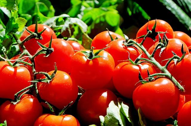 tomatoes-1280859-640