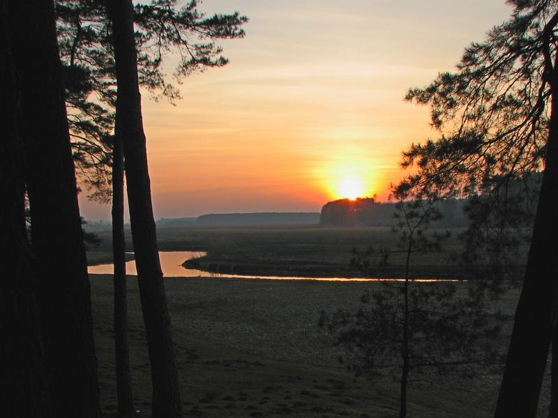 Сонце сідає за Стиром. Там, вище Хрінниківського водосховища, вода у Стиру помітно прозоріша