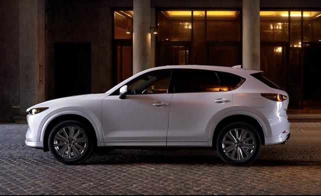 2017 - [Mazda] CX-5 II - Page 6 A8-BB3-BD3-854-E-44-CC-845-A-483-E0590-EC26