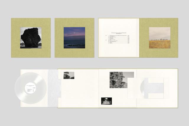 Damon-Vinyl-Comp12