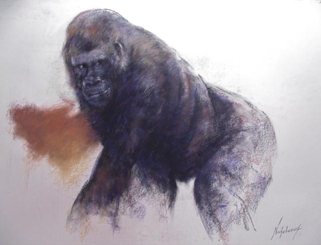 11-Gorila-tecnica-Pastel