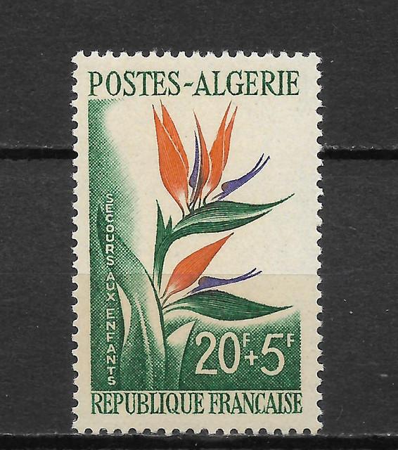Blumen Algerien 376
