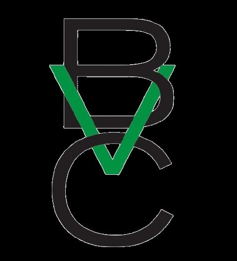 Brazil Venture Capital
