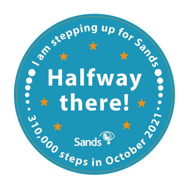 310k-Steps-Achievement-Badges-Half-Way-Through