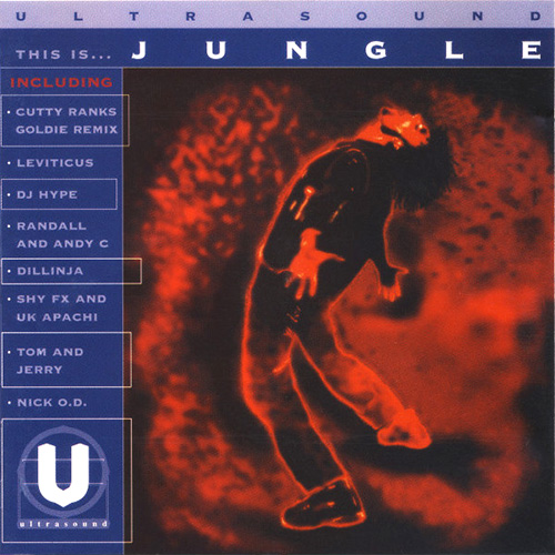 VA - This Is... Jungle 1994