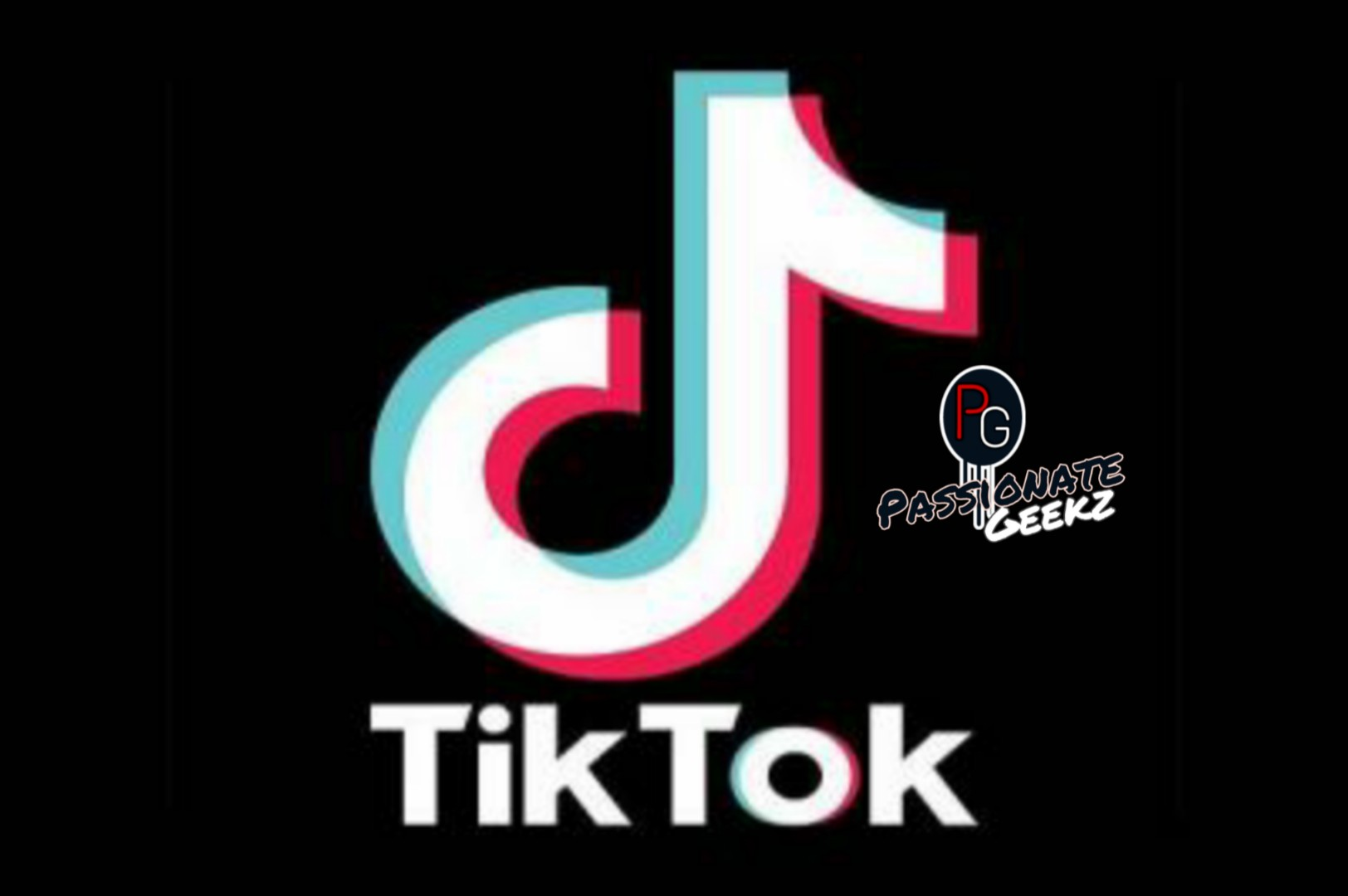 TikTok Ban ! Removed From Google play Store – Until Courts  next order
