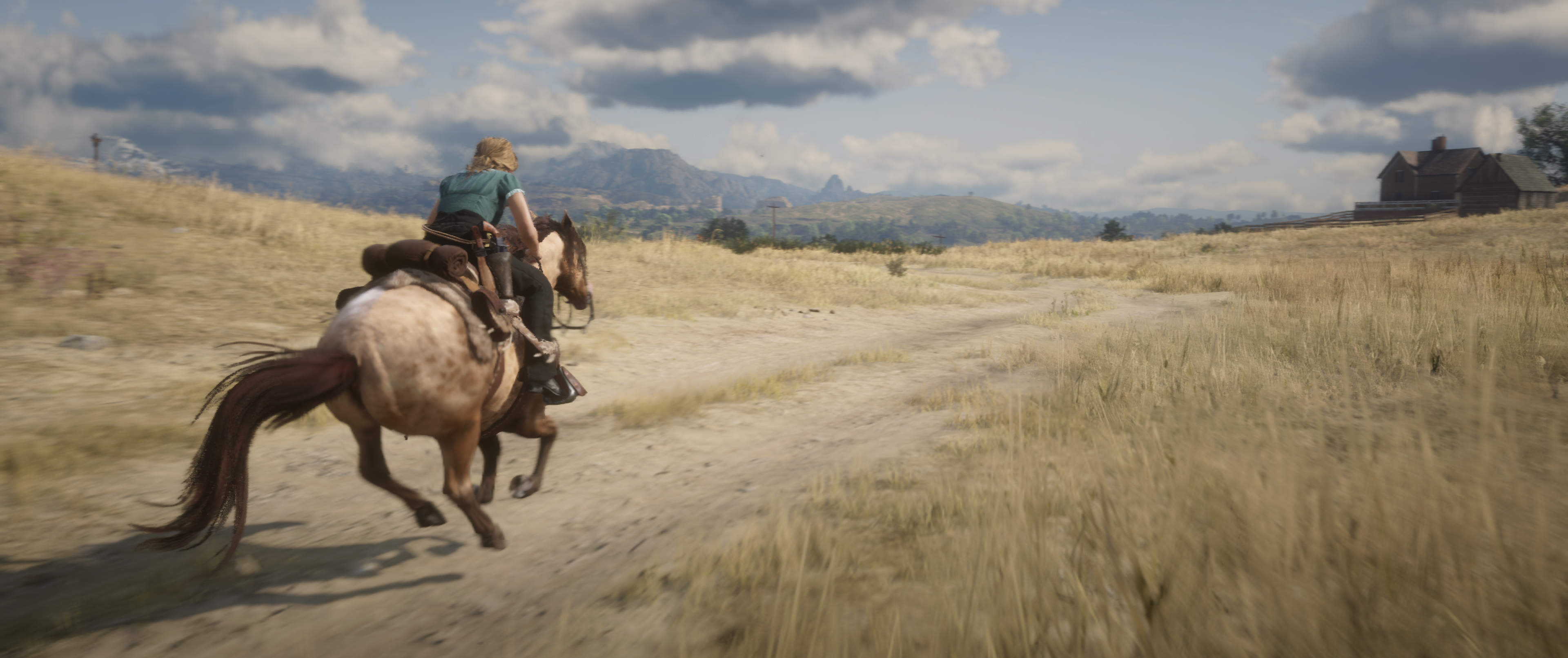 Red-Dead-Redemption-2-20190609064408-2.p