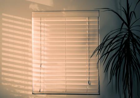 LUXAFLEX-blinds