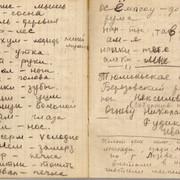 Zina Kolmogorova diary 09