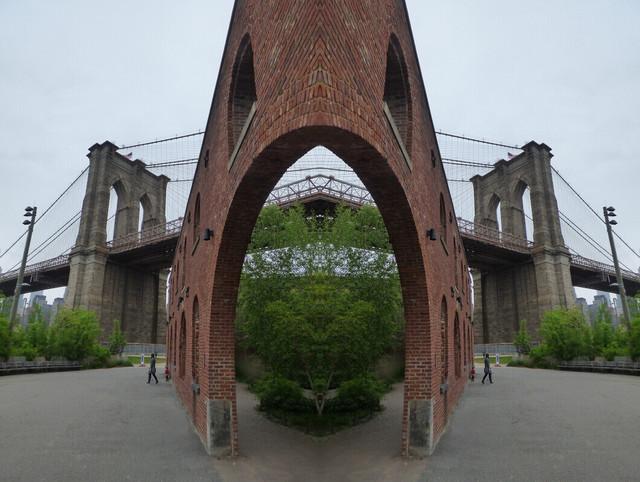 Brooklyn Bridge Bush.jpg