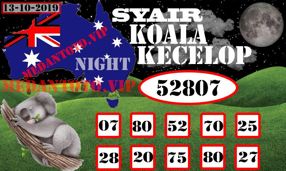 SYAIR-KOALA-KECELOP-13