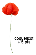 Les Roses - Page 35 Coquelicot