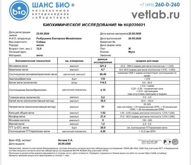 IMG-0140