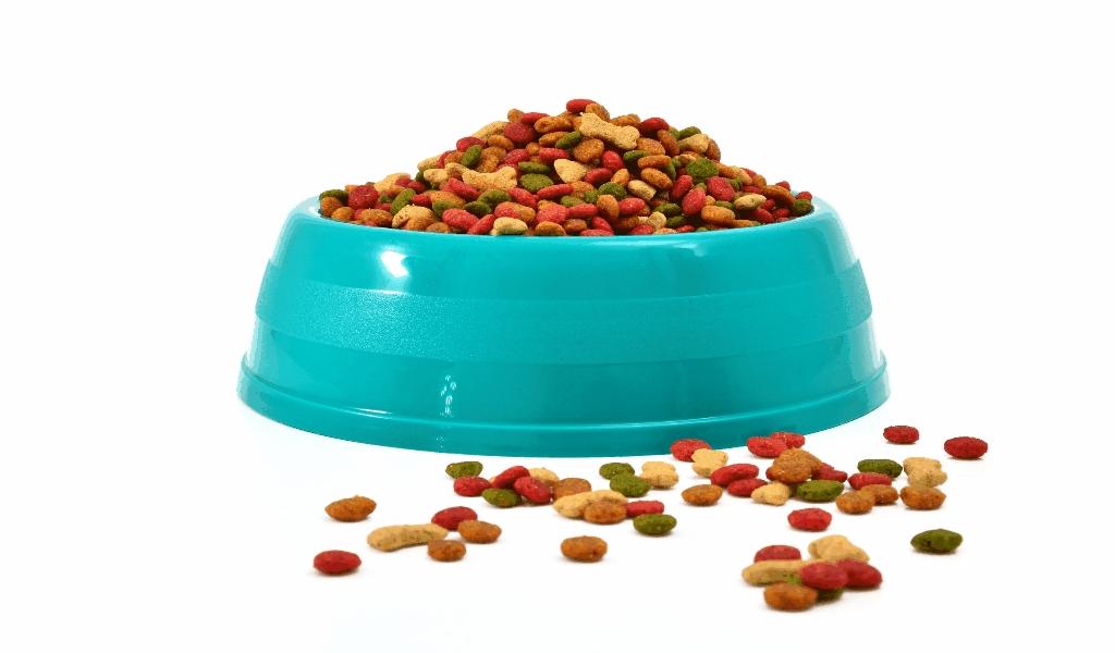 The Odd stuff Pet Food Brand
