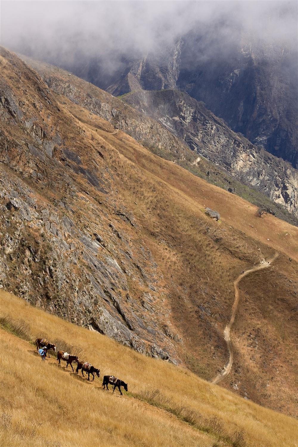 https://i.ibb.co/7gn1s44/Caminos-del-Inca.jpg
