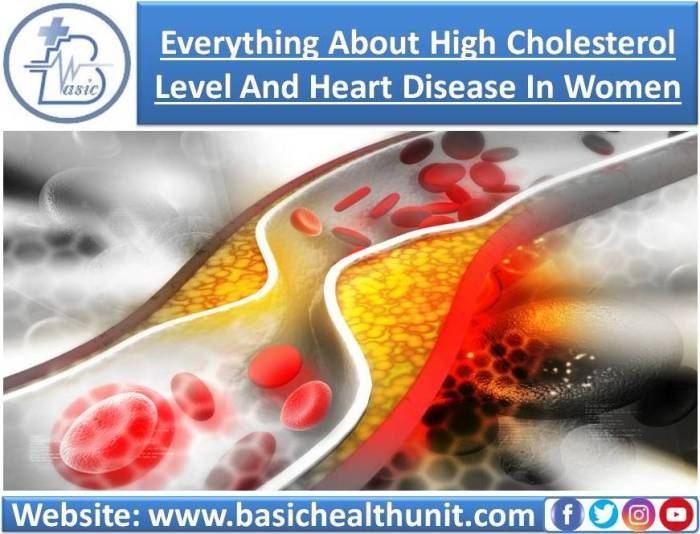 Everything About High Cholesterol Level And Heart Disease In Women