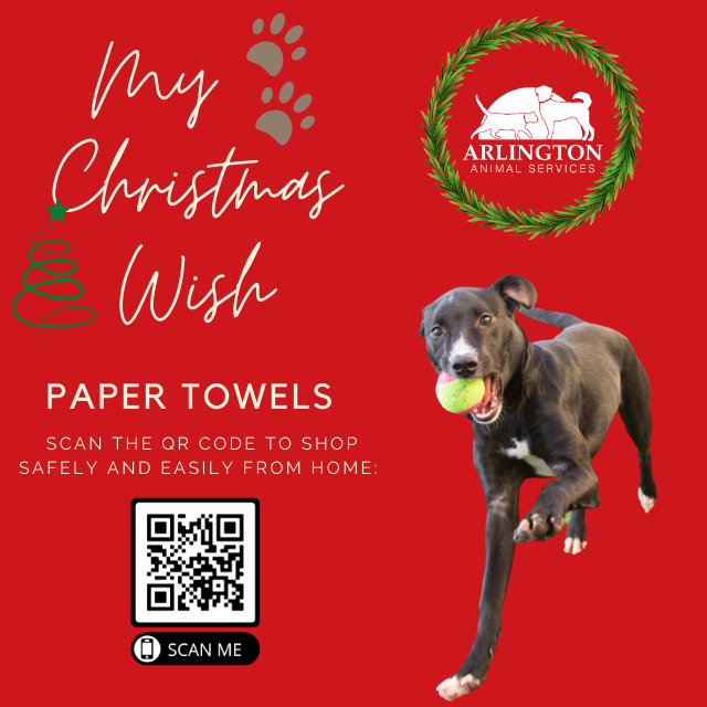Animal-Services-2020-Angel-Tree-073.png