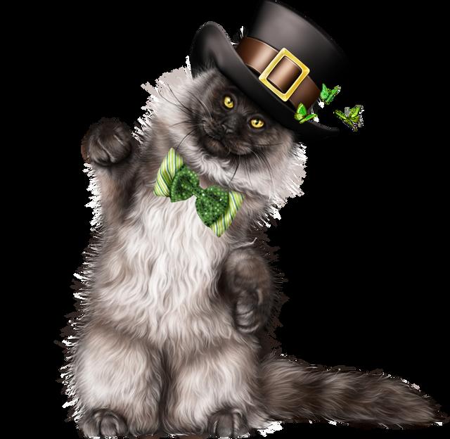Leprechaun-Cat-With-Beer-57.png