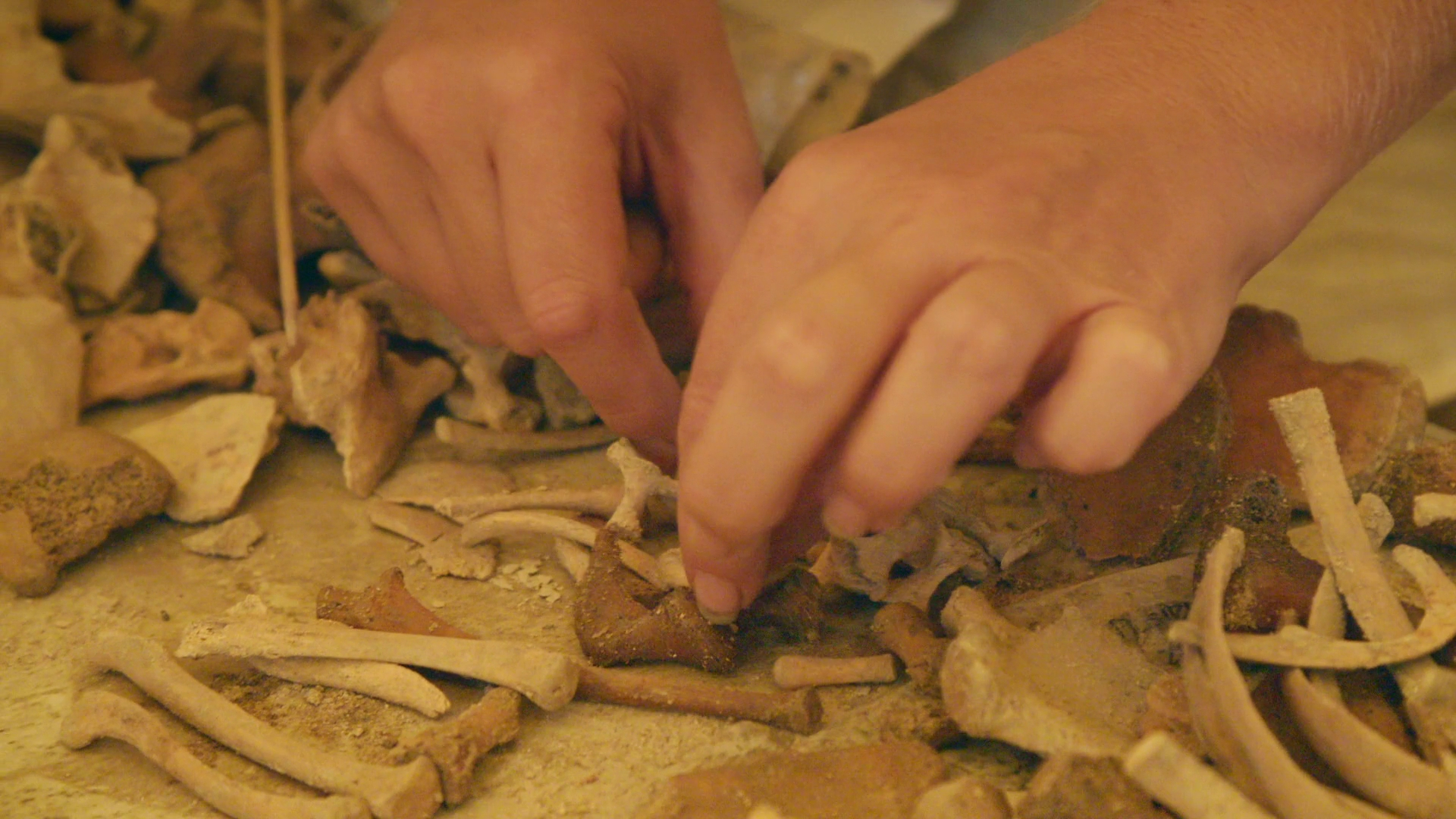 Lost-Treasures-of-Egypt-552
