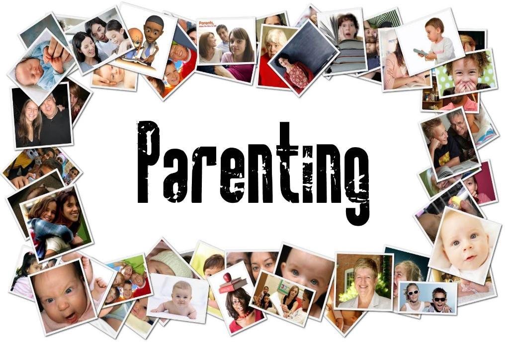 Natural Parenting Stores