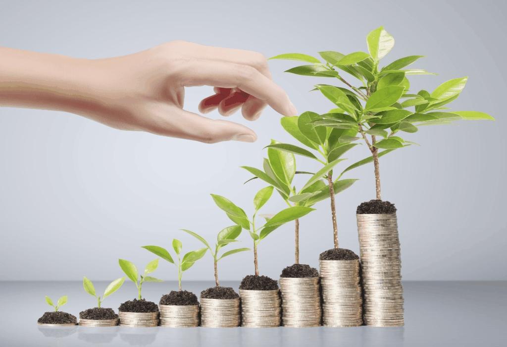InvestFeed Case Study