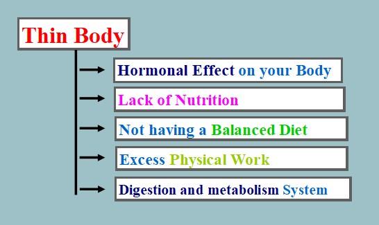 Thin-Body