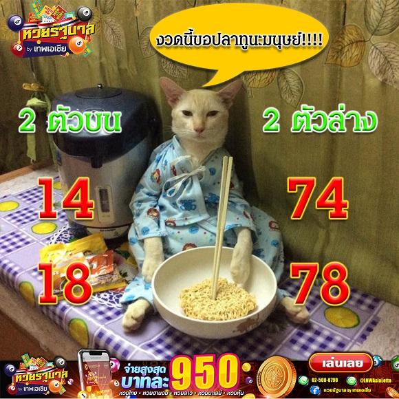 [Image: Lotto-om2019063.jpg]