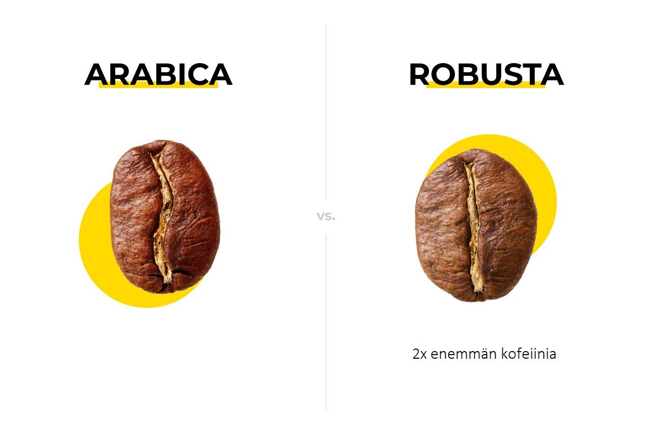 kahvipapujen Arabica, Robusta
