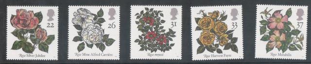 UK-Roses