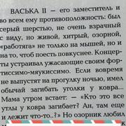 https://i.ibb.co/80dMYzH/333.jpg