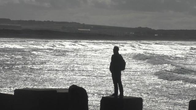 Moray-4-Still006