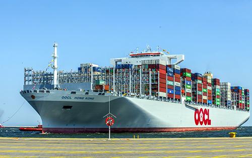 California Sea Container Trends