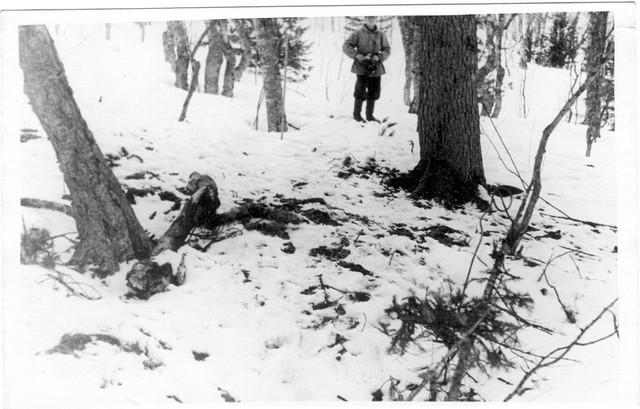 Dyatlov pass 1959 search 35