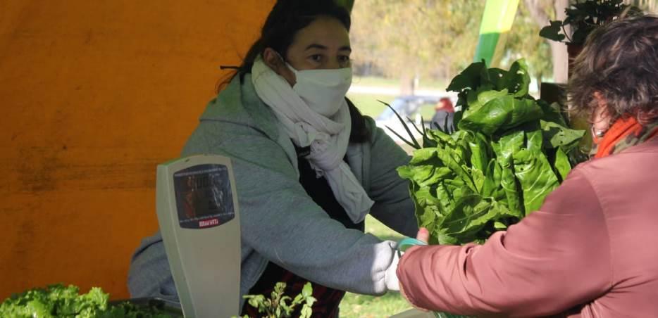 Feria Verde Miramar