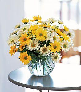 Florist-in-Charlottesville-VA