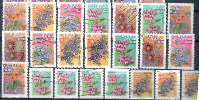 RSA Flowers I