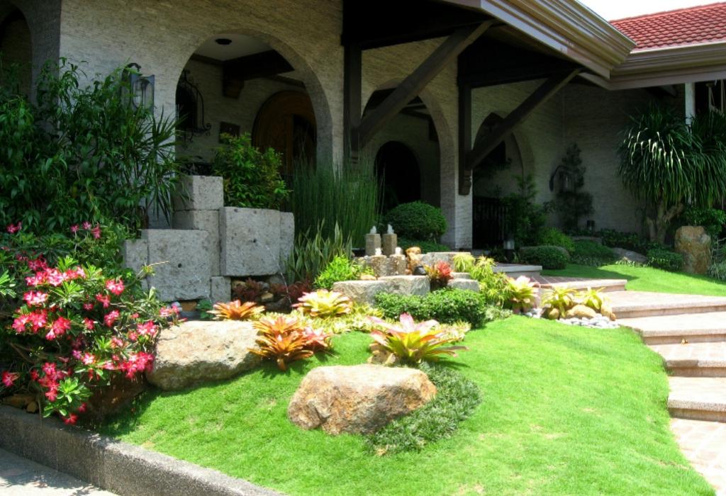 Sobralia Orchids Home Gardening Design News