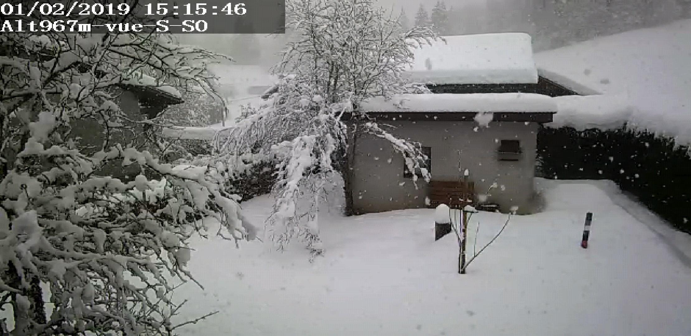 Screenshot-20190201-151557-Foscam-Viewer.jpg